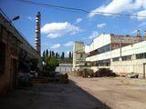 Чеканы, Коммерческая недвижимость: земля, производство, склады от 5400 евро