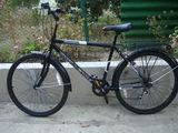 velosiped dlea vzroslih, Anglia