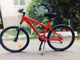 Bicicleta noua,ieftin!