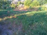 Vind teren pu constructie in Cricova