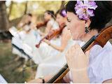 Cvartet De Coarde La Bis Muzica Pentru Inregistrarea Casatoriei