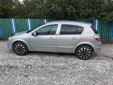 Astra, Opel Chirie auto, Botanica