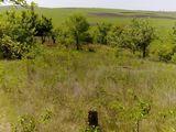 Дачный участок, Se vinde lot de pamint, 14 km de orasul Chisinau, comuna Bacioi.