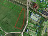 Vind teren pentru constructii - 1 hectar, Ialoveni