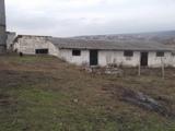 incapere in satul Hulboaca