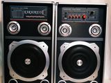 Sistem acustic professional Ailiang USBFM 1100 DT cu garantie 1 an si cu livrare gratuita