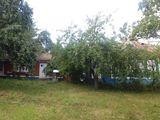 Se vinde gospodarie in satul Zabriceni, r-nul Edinet