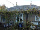 Продам котельцовый, 1 этажный дом 180м2, 6 сот.земли, ул.К.Негруци, 9.