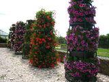 ghivece suspendate,flori,  suporturi, piramide cu flori