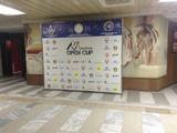 Прессволл, фотопанно, фотостенд, фото баннер для конференций, выставок, корпоративов, презентаций