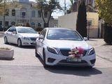 Mercedes S Class W222 - 25 €/ora (час) & 149 €/zi (день)