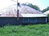 дом добротный,виногрдник 30 с.,колодец возле калитки,фруктовые деревья,сарай подвал.