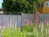 Casa de locuit in or. Ialoveni