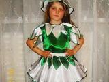 Vind  costume de carnaval floricele