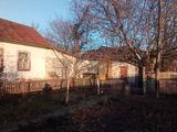 Calarasi centru, casa sau Teren p/u constructie 7,6ari.