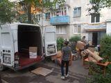 Servicii Hamali și Transport
