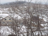 Vând casă cu lot de pământ, 3 hectare și 22 ari