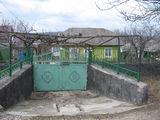 Продам дом в Оргееве