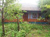 Vind urgent !! Casa in satul Braviceni, Orhei.