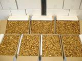 Куплю или возьму в аренду , цех по переработке орехов, действующий