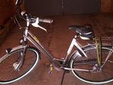 gazelle bicicleta
