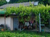 Casa, 2nivele, in zona ecologa, linga padure