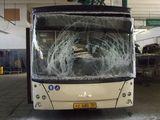 автобусные стекла