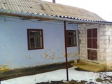 Casa in edinet sau loc de casa cu 9 sote.