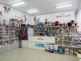 Магазин центр 17000 $ Чадыр-Лунга