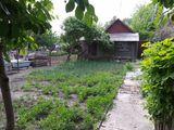 Продам недорого 1 этажный дом в _Бельцах - 40м2, 3 сот.земли.