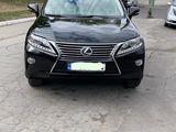 Lexus RX Series