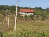 3 hectare de teren gradina linga Chisinau - Colonita cu gaz, electricitate si apa linga teren...
