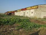 Агрокомплексное Помещение для склада или производства