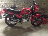 Viper sport 200
