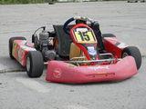 Alte mărci -karting 100сс