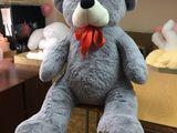 Ursi de plus , urs gigant , ursulet , urs mediu , urs premium + Baloane cu heliu si livrare !