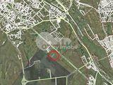 Lot de teren 1 ha, Botanica, 55000 € !