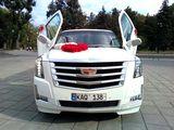 Limuzine la super pret!!!Limuzine Chisinau,limuzine Moldova de la Limos.md