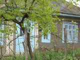 Se vinde, o casă, in Singerei,8 ari