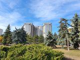 Park House, Râșcani, Bd. Moscova , Apartament cu 2 odăi, suprafață generoasă!