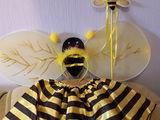 Костюм пчёлки и бабочки