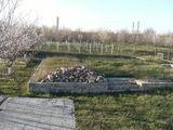 Vind temelie noua pentru casa in orasul Floresti urgent!!!
