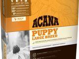 Корма класса холистик (высший класс кормов) для собак и кошек Acana и Orijen. Бесплатная доставка
