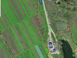 Vand teren grădina Durlești cu suprafata de 25 ari, 19000 de euro!