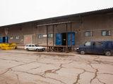 Склад в аренду   460m2; 325m2; 785m2,   1,6 €/m2  depozit chirie  Petricani