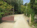 Masivul de vile din Pîrîta pe o fîșie minunată între pălure și Nistru. Drum asfaltat pînă la porțile