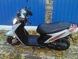 Viper sky motoQM50QT_6D