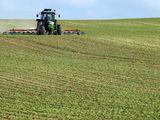 Teren agricol  in arenda