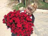 101 trandafiri de la 2700 lei !!! jucarii moi + baloane - livrare rrapida !!!