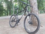 Cannondale Trail5